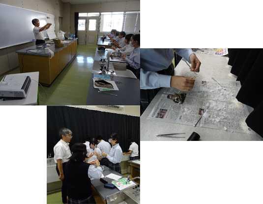 高大連携出前授業(理科)